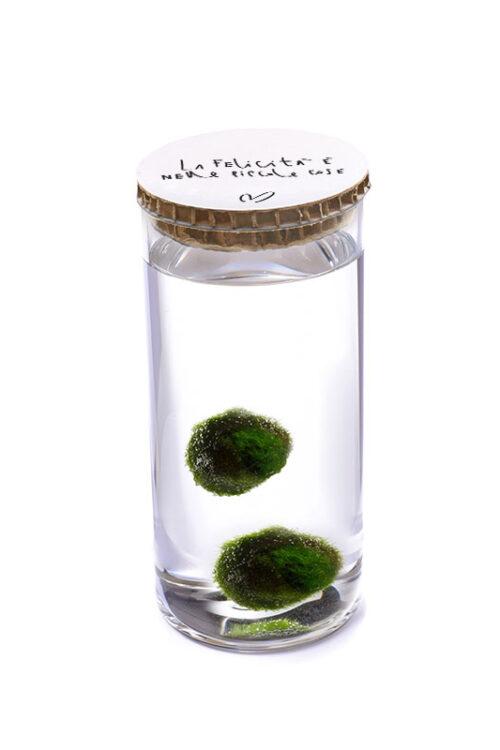 Alga Palla™ Eco Coppia - La Felicità Black Bianco