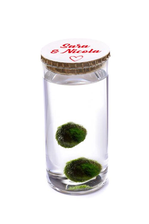 Alga Palla™ Eco Coppia - Love Bianco