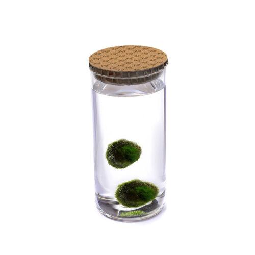 Alga Palla™ Eco Coppia - Texture Avana